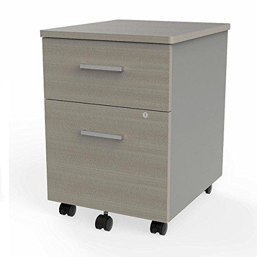 Linea Italia ZUD106 Filing Cabinets, Ash/Silver - Executive 2 Door Cabinet