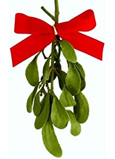 real natural mistletoe one fresh cut sprig with bow - Mistletoe Christmas