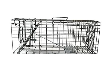 conejos, ardillas, visones, gatos salvajes, animales dañinos, atrapar animales jaula plegable: Amazon.es: Hogar
