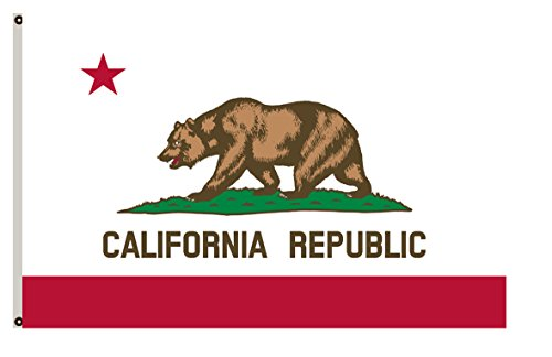 Fyon California Republic Flag 6x10ft