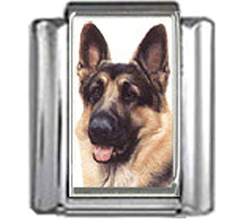 Stylysh Charms German Shepherd Dog Photo Italian 9mm Charm DG208 Fits Nomination Classic