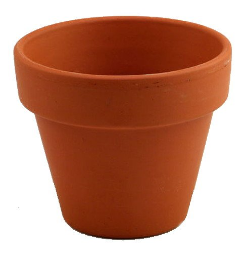 5  6quot Clay Pots  Great for Plants and Crafts