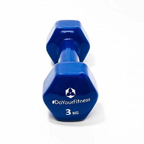 Pesas de vinilo »Hexagon« / Mancuernas disponibles en diferentes pesos y colores / 3 kg, azul marino: Amazon.es: Deportes y aire libre