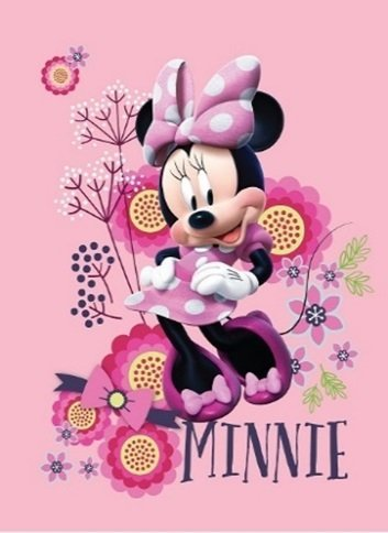 Disney Minnie Mouse Floral Pink Super Soft Plush Oversized Twin Size Blanket Just Minnie 60x80 Inches slhf 5925165