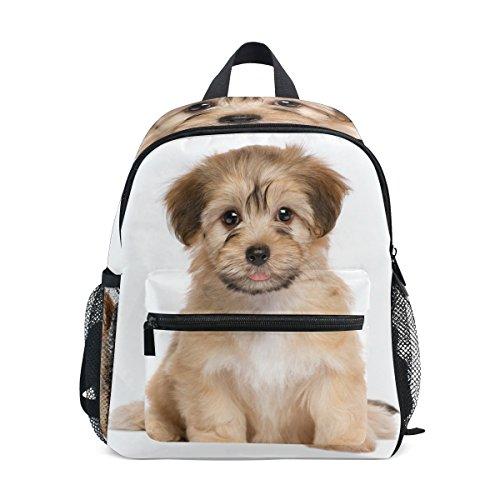 ColourLife Kids Preschool Book bag Cute Havanese Puppy Dog Backpack School Bag for Girls Boys