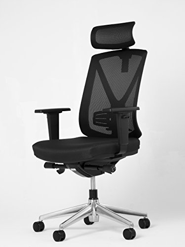 ive Chair, Office Mesh Chair, Desk Chair, Fully Adjustable Home Office Furniture, Ergonomic Seating for Professional Work Spaces, Office Chair ()