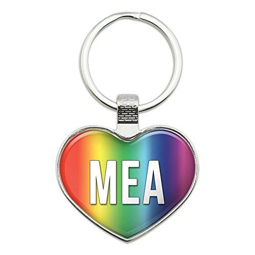 Metal Keychain Key Chain Ring Rainbow