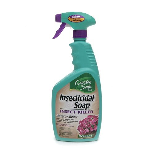 garden-safe-insecticidal-soap-insect-killer-kills-bugs-on-contact-24-fl-oz-pack-3