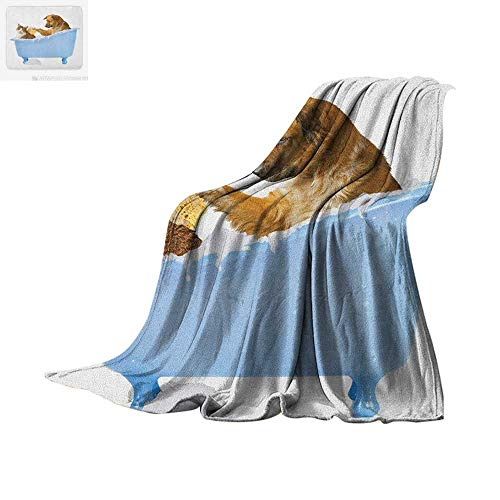 (Cat Lightweight Blanket Dog and Kitty in The Bathtub Together with Bubbles Shampooing Having Shower Fun Artsy Print Velvet Plush Throw Blanket 90
