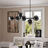 Caserti Mid Century Modern 6 Light Pendant Lighting | Black with Smoke Glass Globes Hanging DNA Chandelier Light Fixture LL-P672-5BLK