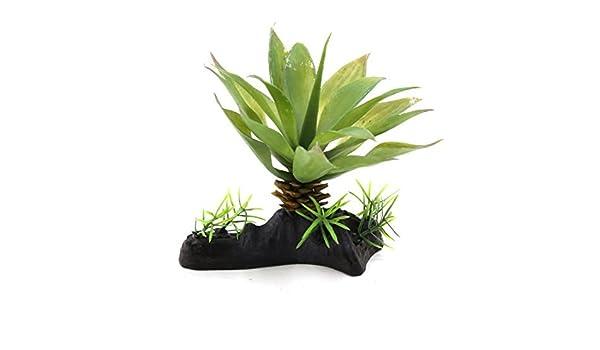 DealMux plástico verde del ornamento planta de acuario hojas terrario para reptiles Animales: Amazon.es: Productos para mascotas