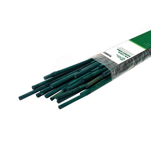 Garden Treasures 25-Pack 48-in Bamboo Landscape Stakes (Canes Bamboo)