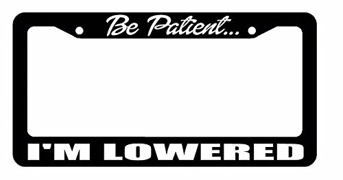 lowered license plate frame - 4