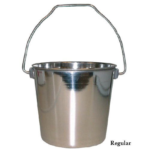 Stainless Steel Pail 6qt, My Pet Supplies