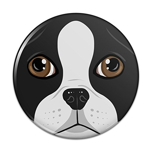 Boston Terrier Look Into My Eyes Face Pet Dog Compact Pocket Purse Hand Cosmetic Makeup Mirror - 3