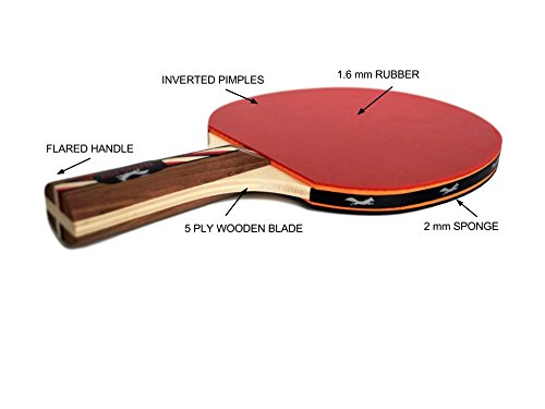 Table Tennis & Ping Pong Paddles Set with Carry Case - Professional Quality Racket with Flared Wood Handle for Novice to Semi-Pro by Flying Fox Paddles by Flying Fox (Image #6)