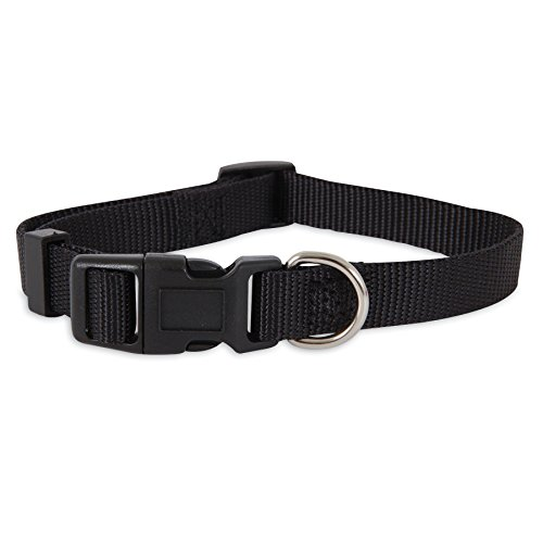 Petmate ASPEN PET PRODUCTS 15710 Nylon Adjustable Collar, 10-Inch, Black (Aspen Pet Dog Adjustable Dog Collar)
