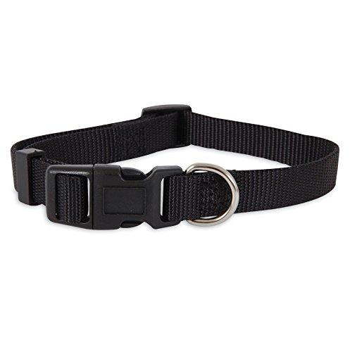 ASPEN PET PRODUCTS 15710 Nylon Adjustable Collar, 10-Inch, Black Aspen Pet Adjustable Dog Collar