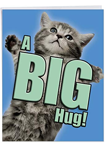 Large 'A Big Hug Cat Get Well' with Envelope 8.5 x 11 Inch - A Big Hug from An Adorable, Fuzzy, Grey Kitten and Cat Get Well Soon Greeting Card - Animal Stationery J6614AGWG