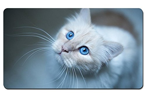Burmese cat muzzle blue Animal - Large Gaming Mouse Pad - Tabletop Mat - 23.6