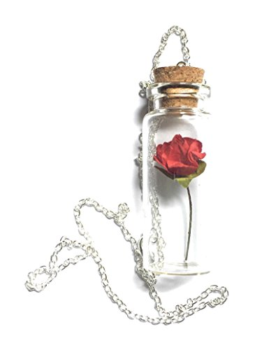 Beauty Beast Inspired Bottle Necklace product image