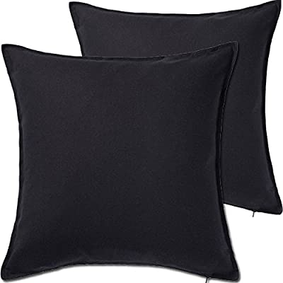2 Pack Cushion Covers