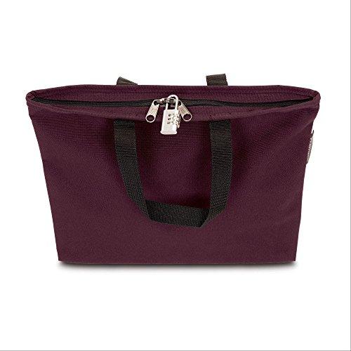 Hopkins Medical Products Lockable PHI Carrier: Letter Size Bag w/Combo Lock - - Letter Carrier