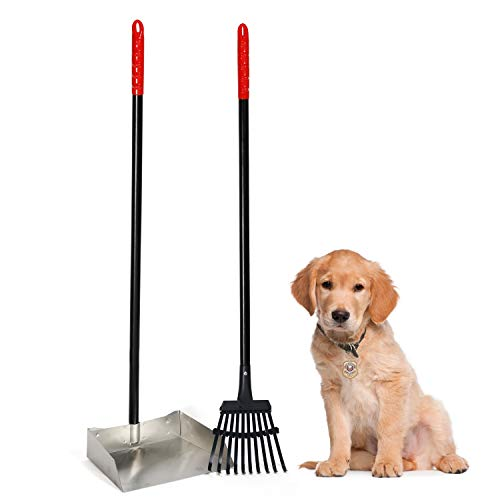 Dogit Waste Scoop, Dog Pooper Scooper & Rake Combe for Easy Grass & Pavement Pickup, Large