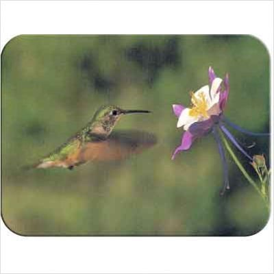 (Tuftop Hummingbird and Columbine Cutting Board Size: Medium (12x16) by McGowan)