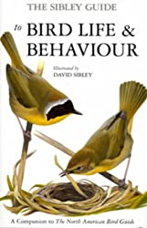 The Sibley Guide to Bird Life and Behaviour (Ornithology)