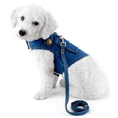 Zunea Denim Harness for Small Dogs Leash Set Step-in Adjustable Durable Jean Jacket Vest Harness with D-Ring No Pull Lead for Pet Puppy Cat Walking Blue M (Cat D-ring Harness)