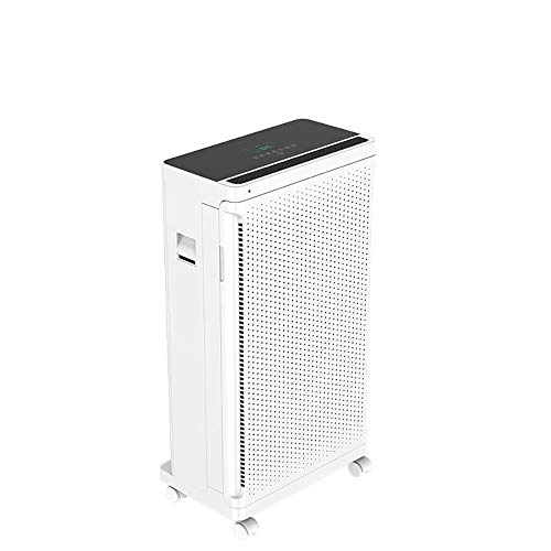 Lour Home air Purifier, air Purifier with HEPA Filter and ionizer, air Purifier Filter Performance, Against dust Pollen Smell, for Allergy sufferers and Smokers