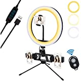 LED Ring Light 10 Inch Desktop Selfie Ringlight with Tripod Stand &Phone Holder for YouTube Video Shooting/Zoom Meeting/Makeup,Upgraded Tiktok Selfie Circle Photography Lighting Kit
