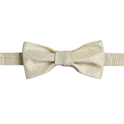 Ivy Lane Design Pre-Tied Silk Dupioni Bow Tie Champagne