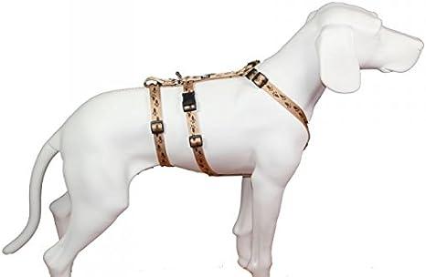 No Exit Ausbruchsicheres Hundegeschirr Für Angsthund Sicherheitsgeschirr Für Pflegehunde Panikgeschirr Beige Mit Braunen Pfötchen Bauchumfang 35 50 Cm 15 Mm Bandbreite Haustier
