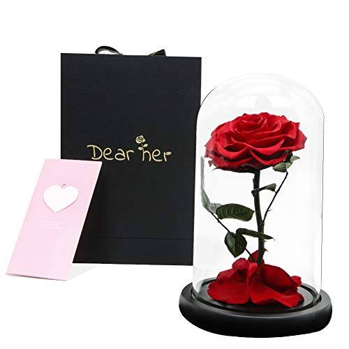 Beauty and The Beast Rose.Dear her Handmade Preserved Flowers,Forever Rose in a Glass Gift Box,Family Party, Wedding, Anniversary,White Day Best Gift for Her (red) ()