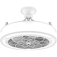 Anderson 22 in. Indoor/Outdoor White Ceiling Fan with light