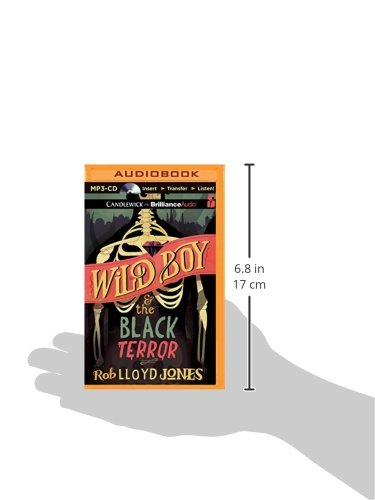 Wild Boy and the Black Terror by Candlewick on Brilliance Audio (Image #1)