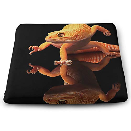 Comfortable Seat Cushion Chair Pad Orange Geckos Inverted Reflection Perfect Memory Foam Cushions Lighten The Bumps