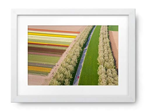 es Car on Road Near Tulip Fields, Holland - Framed Print, Framed, White, White Matte, 22.5x16.5 ()