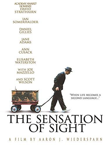 The Sensation of Sight ()