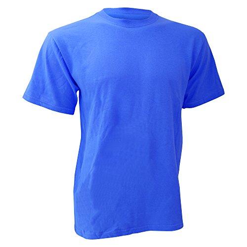 Anvil Mens Heavyweight Tee/T-Shirt (S) (Royal Blue)