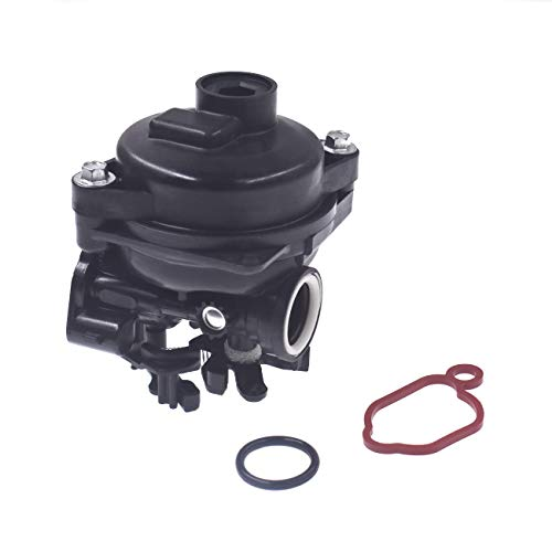 Briggs & Stratton 799584 Carburetor