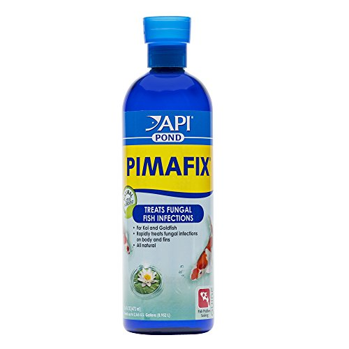 (API POND PIMAFIX Antifungal Pond Fish Infection Remedy 16-Ounce Bottle)