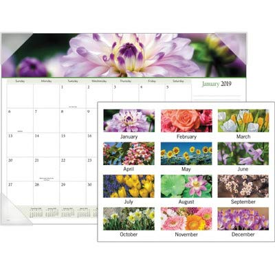 2011 Desk Pad Calendars - Visual Organizer Recycled Floral Panoramic Monthly Desk Pad, 22 x 17 Inches, 2011 (89805-11)