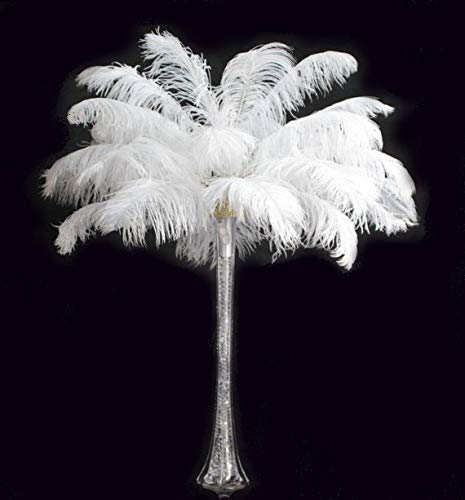 Special Sale OSTRICH Feathers Wholesale Bulk 15/18'' long DELUXE TAIL PLUME Feathers Bleach White Qty 100 by ExoticFeathersLA (Image #5)