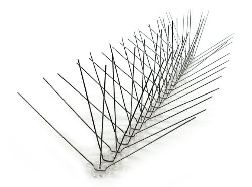 Bird-X Extra Wide Stainless Steel Bird Spikes, Covers 10 (Bird Deterrent Spikes)