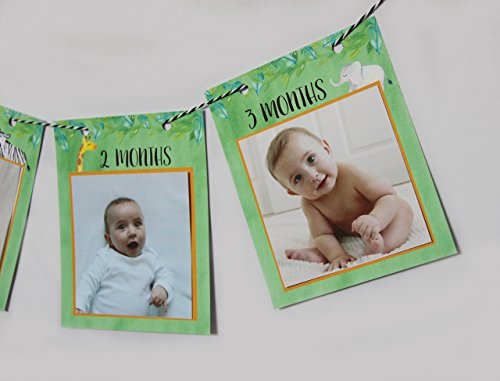 - Jungle First Birthday Monthly Photo banner, Fits photos 4x4, First year photo banner, New born - 12 months
