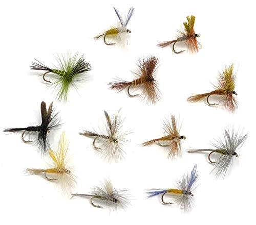 Feeder Creek Fly Fishing Assortment - 72 Dry Flies in 12 Patterns in Sizes 12,14,16 (Hendrickson, Drake, Dun, and More)