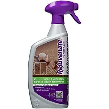 Rejuvenate Bio-Enzymatic Carpet & Upholstery Spot & Stain Remover Simply Spray and Walk Away – Removes Mud, Chocolate, Grass, Pet Stains and More – 24 Ounce